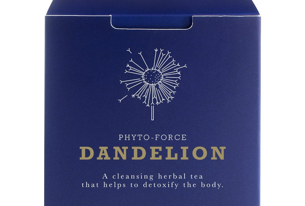Phyto-Force Dandelion Herb/Root Extract Tea Powder 60g